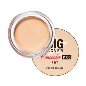 Etude House Big Cover Concealer PRO 4g