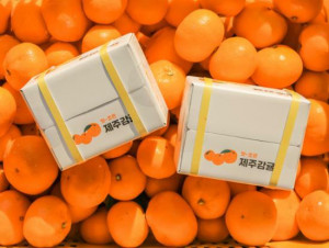 Island Tangerine Hand Cream 30ml*3