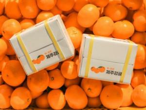 Island Tangerine Hand Cream 30ml*3