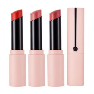 The Face Shop fmgt [Rosy Nude Edition] Ink Sheer Matte Lipstick 4.8g