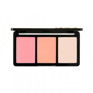 The Face Shop fmgt Mono Pop Cheek Palette Signature 4g X 3